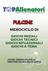 ebook Pulcini