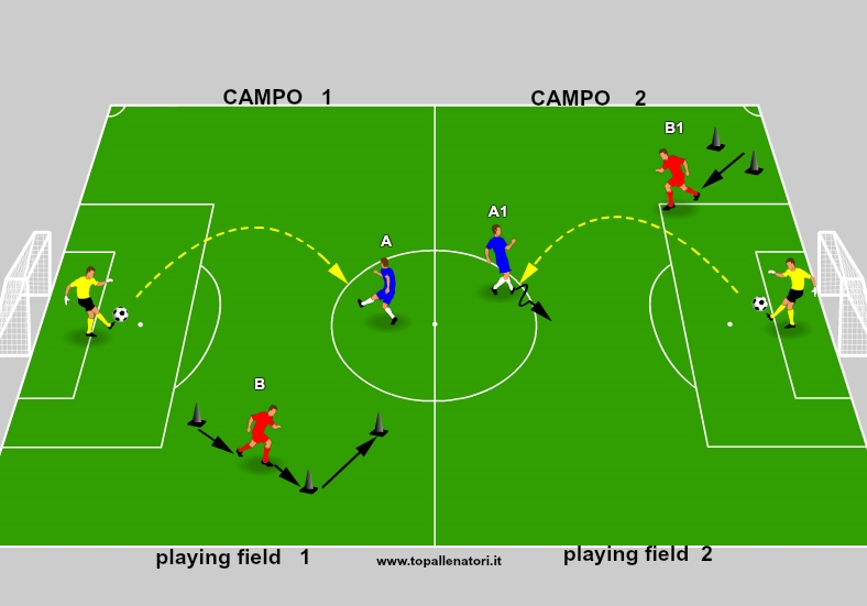 playing field soccer
