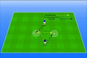 topallenatori-palle-inattive-2