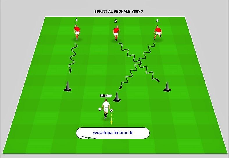 esercizi di reattività nel calcio
